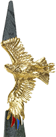 Golden Eagle Award